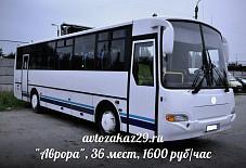 Аврора Архангельск