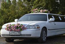 Категория: Лимузины Класс: Премиум Модель: Lincoln Town Car Год выпуска: 2007 Цвет: белый Количество мест: 10 Отделка салона: комбинированная кожа, неон Кондиционер: да Климат контроль: да Тонировка стекол: да Мультимедейная система: да Пенза