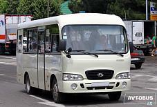 Hyundai County Курган