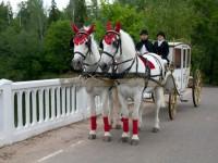 Карета с лошадьми Балашиха