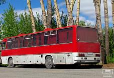 Икарус 250 Красноярск