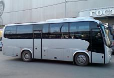 Higer Пермь