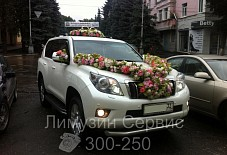 Toyota Land Cruiser Брянск