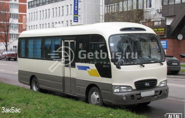 Hyundai Cauty Барнаул